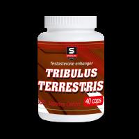 Tribulus Terrestris (40капс)